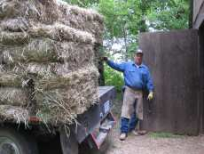 Delivering square hay bales