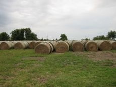 Round hay bales in Kansas field