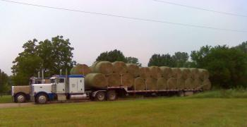 Round hay bales on tractor trailer flatbed