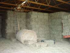 Square hay bales in barn