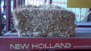 Straw for Sale - Small Squares Wichita KS